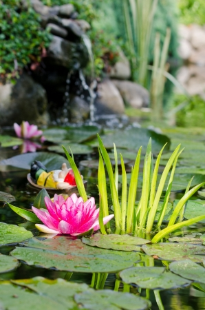 water lily background Stock Photo - 17288425