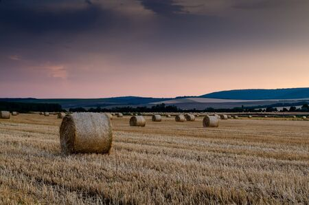hay bales background