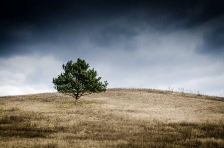 storm landscape Stock Photo
