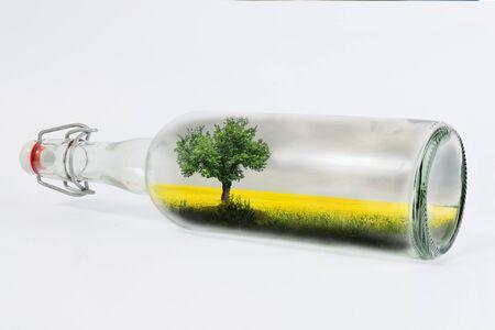 rape field on bottle