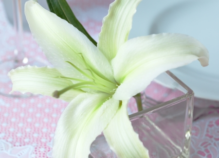 tavolo da pranzo: giglio bianco decorare tavolo da pranzo