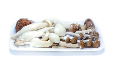 protien: edible mushroom whith plastic wrap on foam package