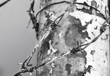 barbed wire bind metal pillar in black and white tone photo