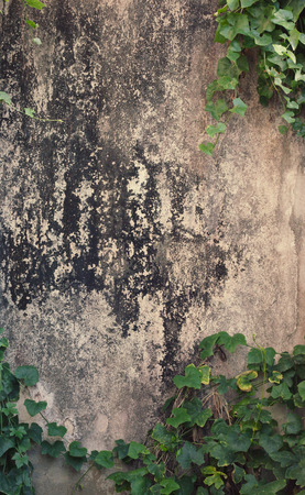 color effect: old and dirty wall with color effect