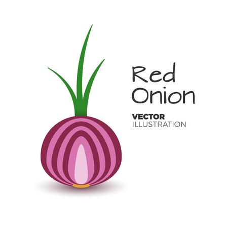 Frische und cutted rote Zwiebelvektorillustration. Frisches, gesundes Gemüse mit grünem Sprössling in der einfachen flachen Art. Zwiebelikone oder -logo getrennt auf Weiß. Bio-Lebensmittel aus dem Garten, Salat Zutat. Standard-Bild - 81582827