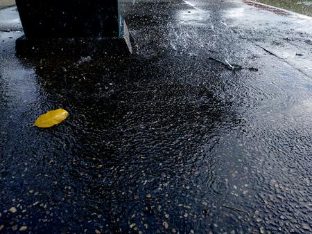 rain on the floors Stok Fotoğraf