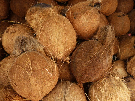 teaser: Coconuts at the fresh market