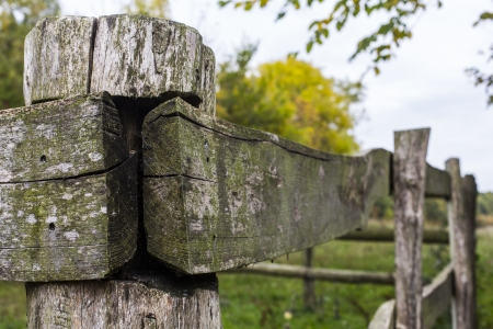 old Rustic wood fence photo