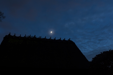 thatched roof: moon hanging over thatched roof