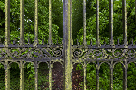 Detail of Ornate Gates and Tree Lined Driveway of a Country Estate photo