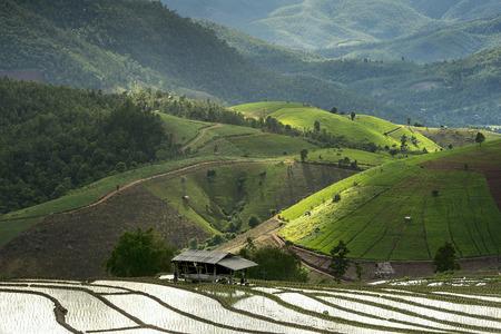 thai people: Beautiful Chiang Mai Northern Thailand