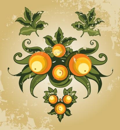 vintage oranges Illustration