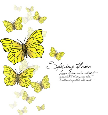 Spring vector background - butterflies on white Stock Vector - 17110612