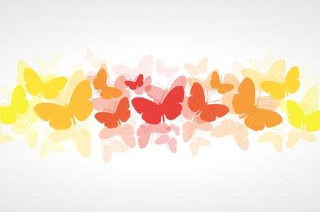 Rojo, naranja y amarillo mariposas vector de fondo blanco Vectores