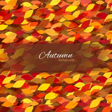 Muchas hojas de colores sobre fondo marr�n