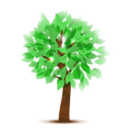 Mooie boom met semi transparante bladeren. Vector illustratie.
