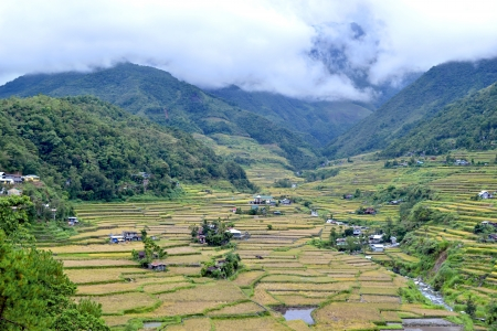 feat: Philippines, rice terraces in the valley Hapao, Banaue Stock Photo
