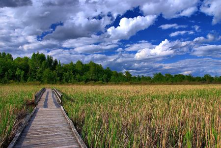 A boardwalk through a peat bog.  Overhead the afternoon clouds are starting to build up.