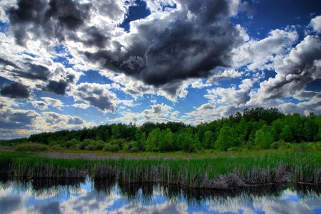 cirrus: Afternoon clouds temporarily block the sun over a marsh.