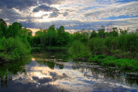 cirrus: Clouds are reflected on the surface of a still pond as the sun is starting to shine through. Stock Photo