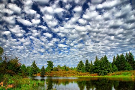 cirrus: Quilted clouds over a small pond.  The trees are reflected in the calm water.