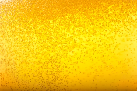 Angered by the bubbles in beer. photo