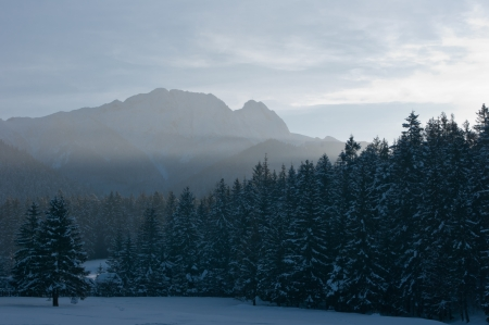 giewont: Giewont and the forest at dusk in winter  Stock Photo