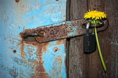 Schloss die Tür mit einem Vorhängeschloss Standard-Bild - 15761025