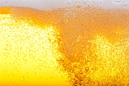 beer background: Beer bubbles in the high magnification and close-up.