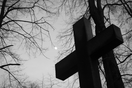 The cross in the cemetery and branches reaching the sky. photo