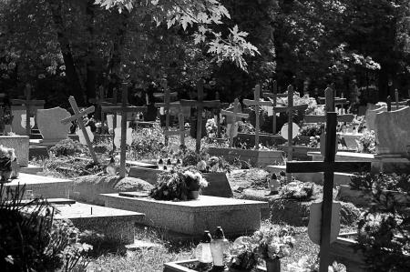 arrepentimiento: Cementerio y muchos cruces.