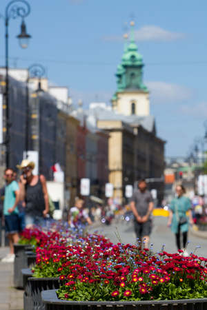 Flowers in a pot near the road to the Old Town in Warsaw. Standard-Bild - 101656544