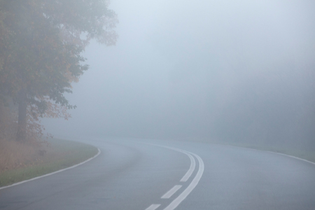 Autumn morning, very early time. Empty street in the forest. Dense fog hindering visibility.