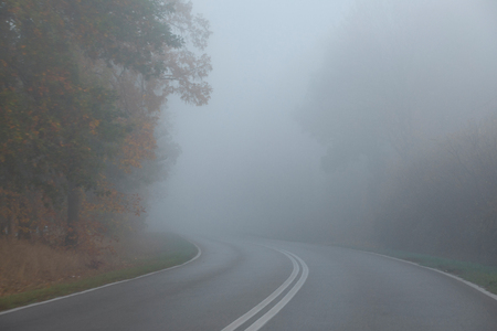 Autumn morning, very early time. Empty street in the forest. Dense fog hindering visibility. Standard-Bild - 115239139