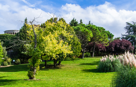 volterra: Green park in Volterra, Italy during a sunny day