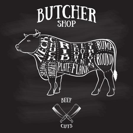 Carnicería: Carnicero corta esquema de ilustración dibujados a beef.Hand de estilo vintage Vectores