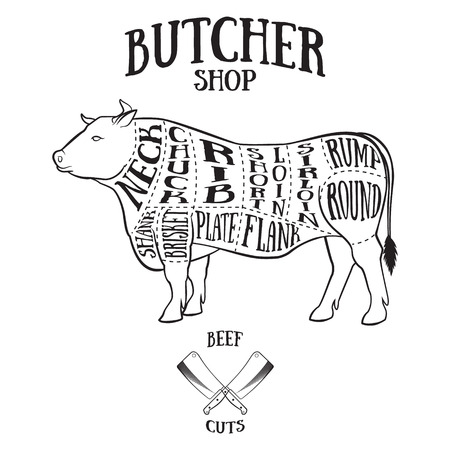 Butcher cuts scheme of beef.Hand-drawn illustration of vintage style