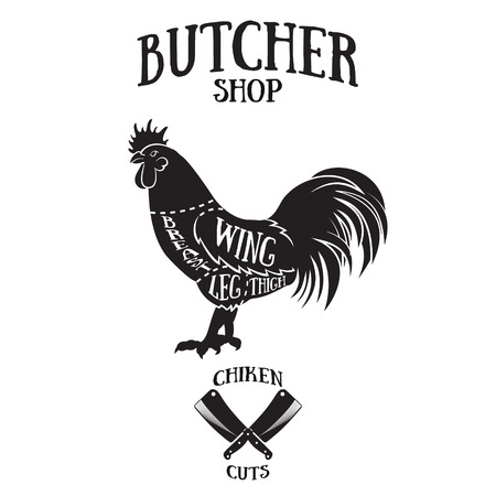 肉屋は、鶏のスキームをカットします。ビンテージ スタイルの手描きイラスト 写真素材 - 41695279