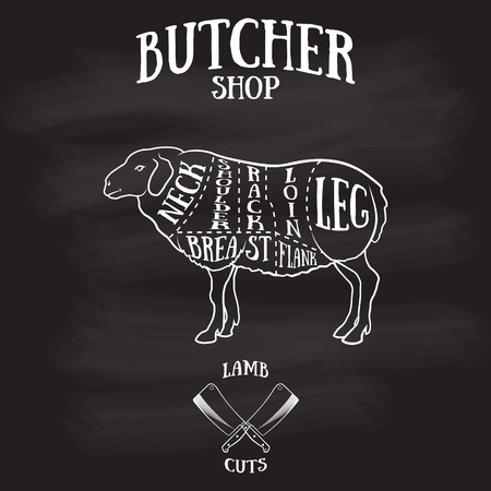 Butcher cuts scheme of lamb.Hand-drawn illustration of vintage style Vettoriali