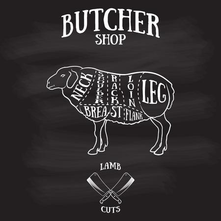 Slager snijdt schema van-lamb.Hand getekende illustratie van vintage stijl