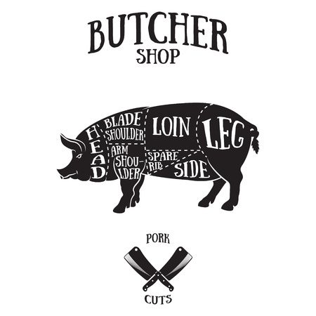 Butcher cuts scheme of pork.Hand-drawn illustration of vintage style  イラスト・ベクター素材