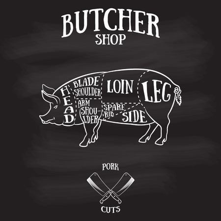 parts: Butcher cuts scheme of pork.Hand-drawn illustration of vintage style Illustration