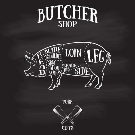 Carnicería: Carnicero corta esquema de ilustración dibujados a pork.Hand de estilo vintage