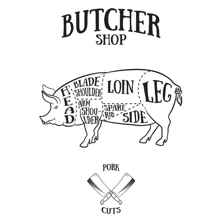 carver: Butcher cuts scheme of pork.Hand-drawn illustration of vintage style Illustration