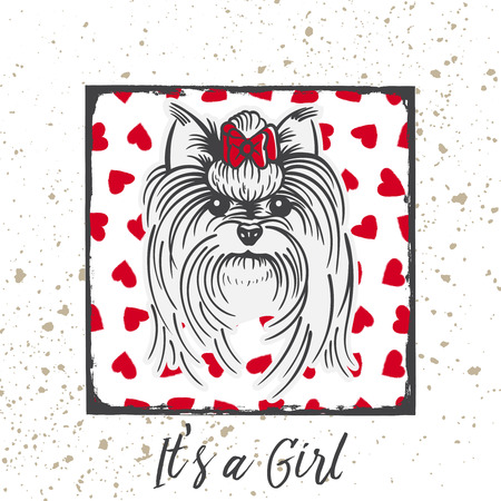 Yorkshire Terrier with a bow.Hand drawn portrait with the inscription-It s a Girl Ilustração