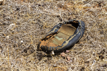 The remains of a shoe found on an old factory site in Spain.