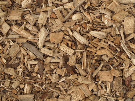 sustained: wood chips, renewable energy