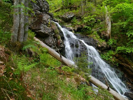 waterfall H?llbachgspreng, wooded rock massif below the Grosse Falenstein mountain, national park Bavarian Forest