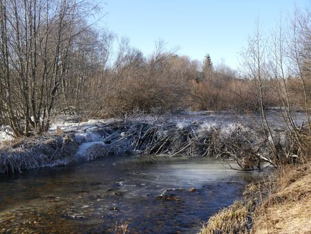 winter landscape with a beaver lodge