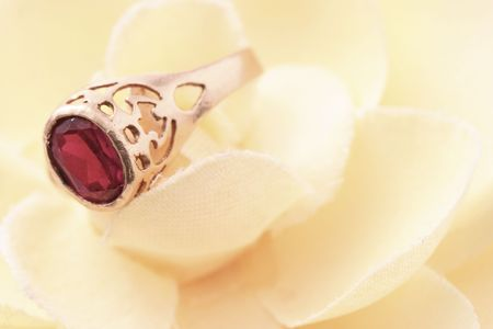 Beautiful macro shot of a ring on a soft flower. Good for wedding products. photo